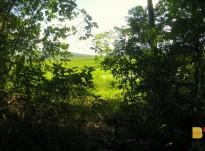 Sentier de la montagne Favard