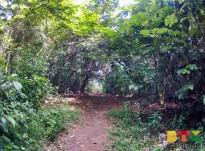 Sentier de la colline de Montabo