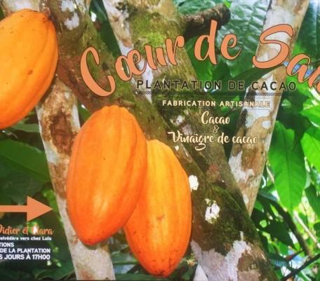 CHOCOLATIER CACAO COEUR DE SAUL EN GUYANE